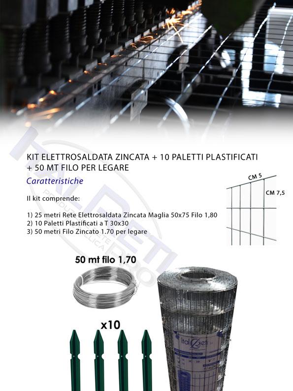 Rete Zincata + Paletti Plastificati